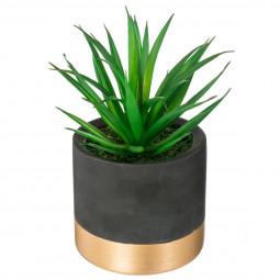 Plante en pot ciment or spirit H18
