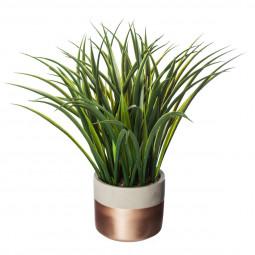 Plante verte ciment H40