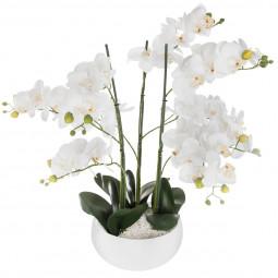 Orchidée pot céramique blanc H65