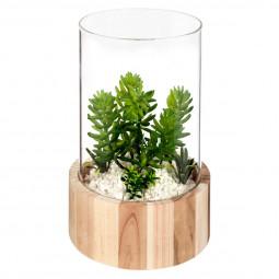 Plante artificielle verre + bois nomade H21