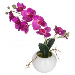 Orchidée en pot céramique h25
