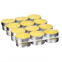 Lot de 24 Bougies chauffe plat citronnelle
