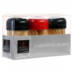 Lot de 3 pots cure dents