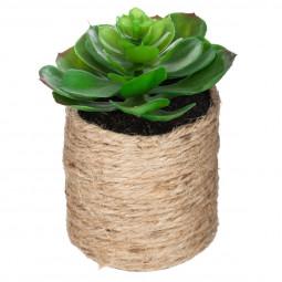 Plante verte corde etnik H15