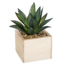 Plante verte bois chic H14