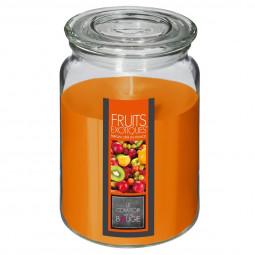 Bougie parfumée fruits exotiques pot verre 510G