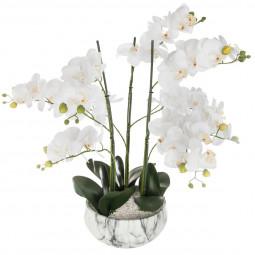 Orchidée dans sont pot en ciment marbré H 65 cm