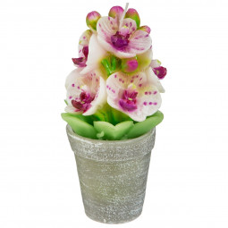 Bougie pot d'orchidee 170G