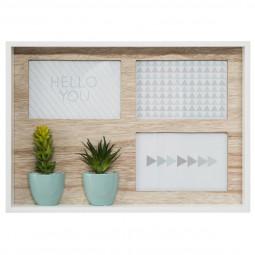 Pêle-mêle 3 photos avec cactus