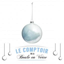 Décoration de sapin Boule de Noël en verre intérieur plume D 9 cm Sous son blanc manteau