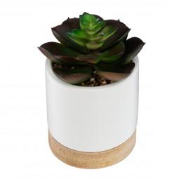 Plante artificielle succulente pot céramique et bois