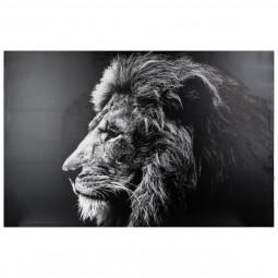Toile imprimée Lion 78X118