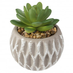 Plante artificielle succulente pot en ciment