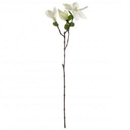 Magnolia 3 Fleurs H 67 cm