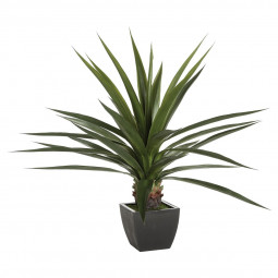 Plante verte en pot H130 - Instinct Naturel