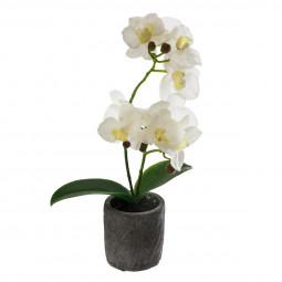 Orchidée Real Touch dans son pot en ciment  33 cm