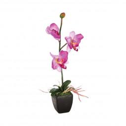 Orchidée en pot céramique H 29.5 cm