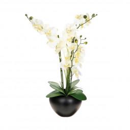Composition orchidée vase céramique H63