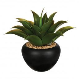 Aloe vera en pot céramique H37