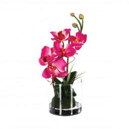 Composition orchidée en vase H37
