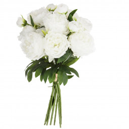 Bouquet de 13 pivoines blanches H50