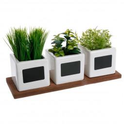 Lot de 3 herbes aromatiques artificielles en pot