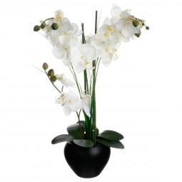 Orchidée vase céramique noir H.53