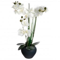 Orchidée vase céramique gris H.53