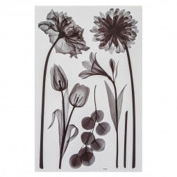 Sticker illustratif fleurs 50X32