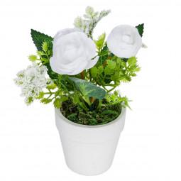 Fleur blanche en pot H16