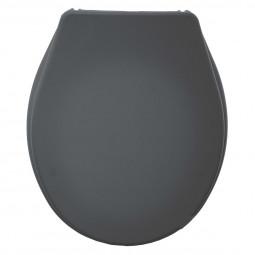 Abattant WC gris
