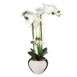 Orchidée vase argent H.53