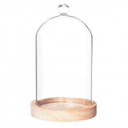 Cloche verre socle en bois H19
