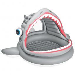 Pataugette Requin